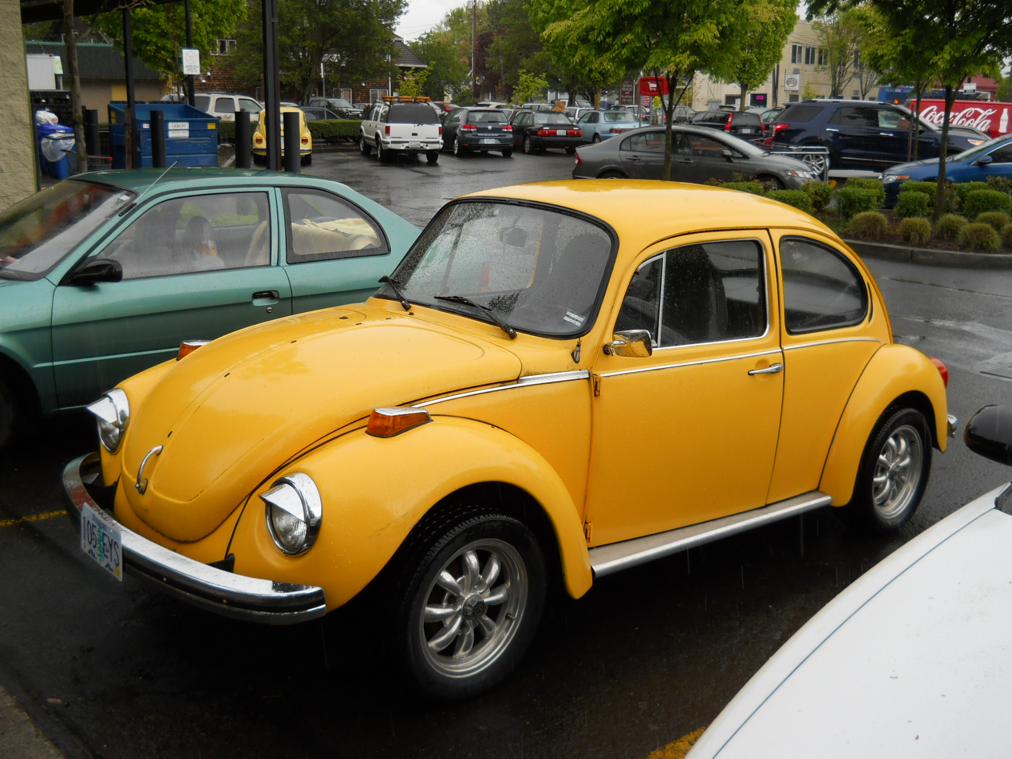 VW Bug | VWs in Portland